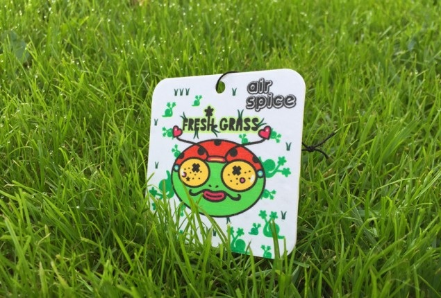 Odorizant auto Fresh Grass - Air Spice